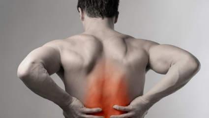crema dureri de spate